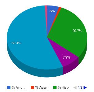 Lincoln College of Technology-Denver Ethnicity Breakdown