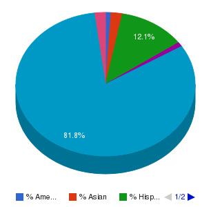 Red Rocks Community College Ethnicity Breakdown
