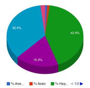 Florida Technical College Ethnicity Breakdown