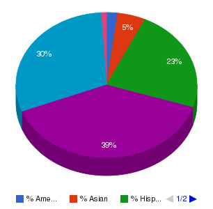 University of Southernmost Florida Ethnicity Breakdown