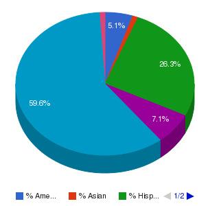 Central Arizona College Ethnicity Breakdown
