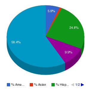 Eastern Arizona College Ethnicity Breakdown