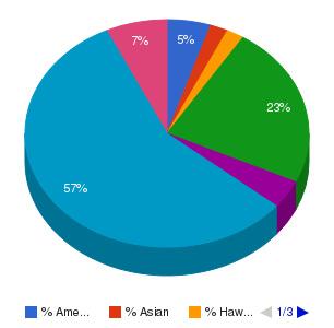 Universal Technical Institute of Arizona Inc Ethnicity Breakdown