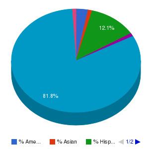 Yavapai College Ethnicity Breakdown