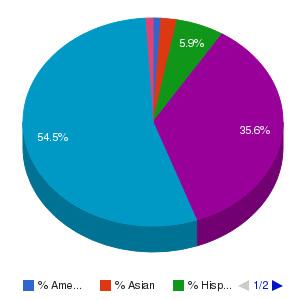 East Arkansas Community College Ethnicity Breakdown