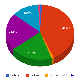 College of Alameda Ethnicity Breakdown