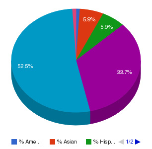 Delgado Community College Ethnicity Breakdown