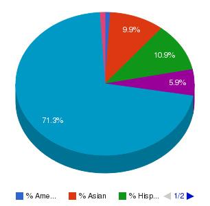 Middlesex Community College (Bedford) Ethnicity Breakdown