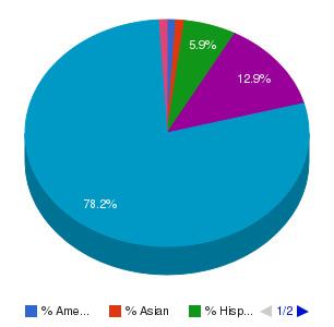 Lake Michigan College Ethnicity Breakdown