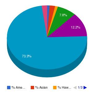 Community College Average Ethnicity Breakdown