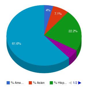 Career College of Northern Nevada Ethnicity Breakdown