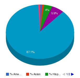 Gloucester County College Ethnicity Breakdown