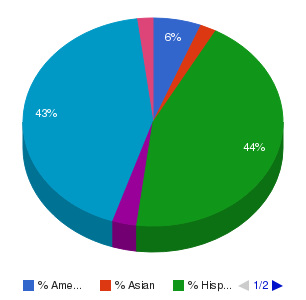 Central New Mexico Community College Ethnicity Breakdown