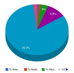 Trocaire College Ethnicity Breakdown