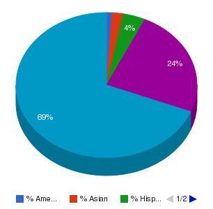 Wayne Community College Ethnicity Breakdown
