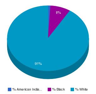 Hocking College Ethnicity Breakdown