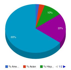 Wichita Area Technical College Ethnicity Breakdown