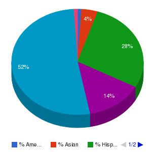 Brown Mackie College-Phoenix Ethnicity Breakdown