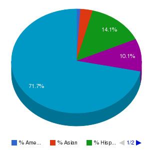 ITT Technical Institute-Wichita Ethnicity Breakdown